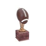 Small Color Football Trophies On Wood Base