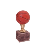 Small Color Basketball Trophies On Wood Base