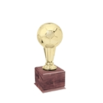 Small Gold Soccer Trophies On Wood Base
