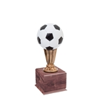 Small Color Soccer Trophies On Wood Base