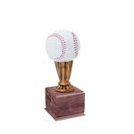 Small Color Baseball Trophies On Wood Base