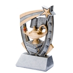 3D Star Knowledge Resin Trophies