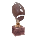 Large Full Size Color Football Trophies On Wood Base