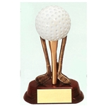 Golf Ball on Clubs Awards