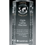 Capricorn Global Crystal Awards