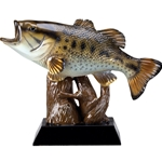 Bass Fish Trophy