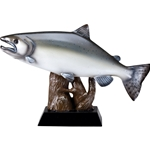Salmon Fish Trophy