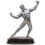 Male Body Builder Trophies