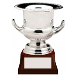 Nickel Plated Wine Cooler Trophy