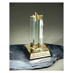 Acrylic Shooting Star Award