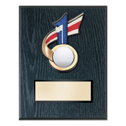 Golf Hole-in-One Plaques