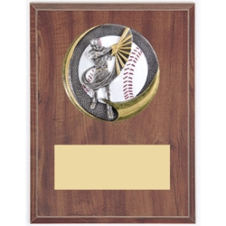 Baseball Motion Extreme Plaques