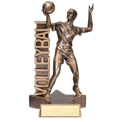 Volleyball Male Billboard Trophies