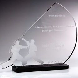 Male Martial Arts Acrylic Awards