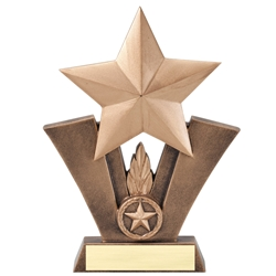 Star Resin Sculputure Trophies