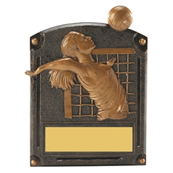 Volleyball Female Legends of Fame Trophy/Plaque