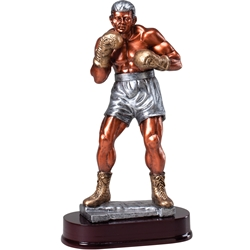 Boxer Large Resin Series Trophy