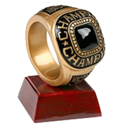 Champion Ring Resin Trophies